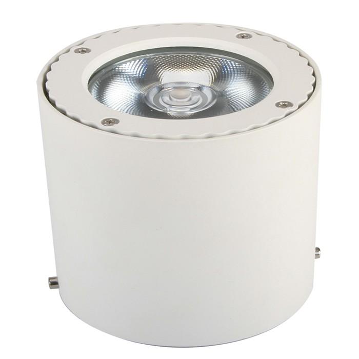LED筒灯 GMFSTD003